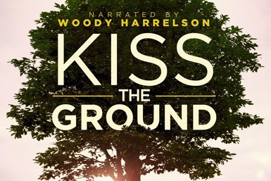 Filmplakat Kiss the Ground.